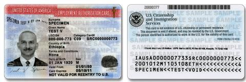 12d0b8c5d5caccb5c7c1e14067e93ba8 - How Long Does It Take To Get Employment Authorization Card