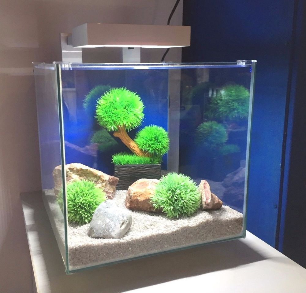 Ciano Nexus Pure 15 White Cube Aquarium L E D Light Includes Filter Aquarium Led Led Lights Aquarium