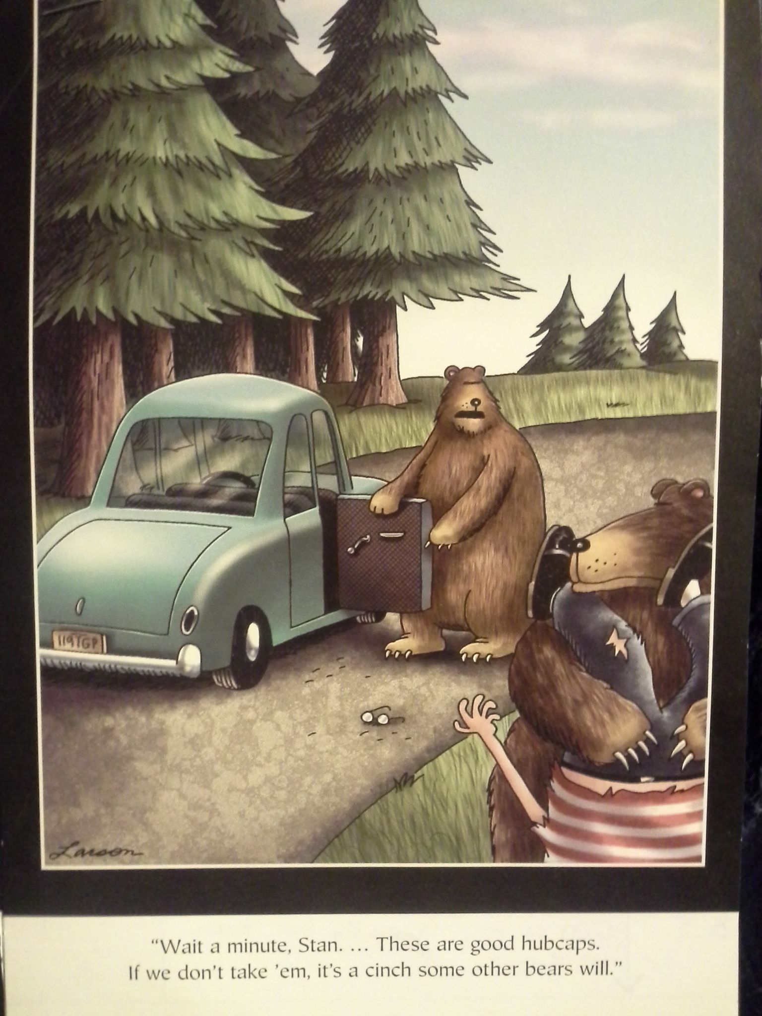 Wait a minute, Stan....These are good hubcaps.  If we don't take em, it's a cinch some other bears will....