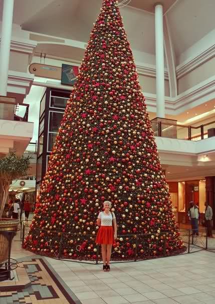Christmas In South Africa Christmas In South Africa Christmas Christmas Traditions