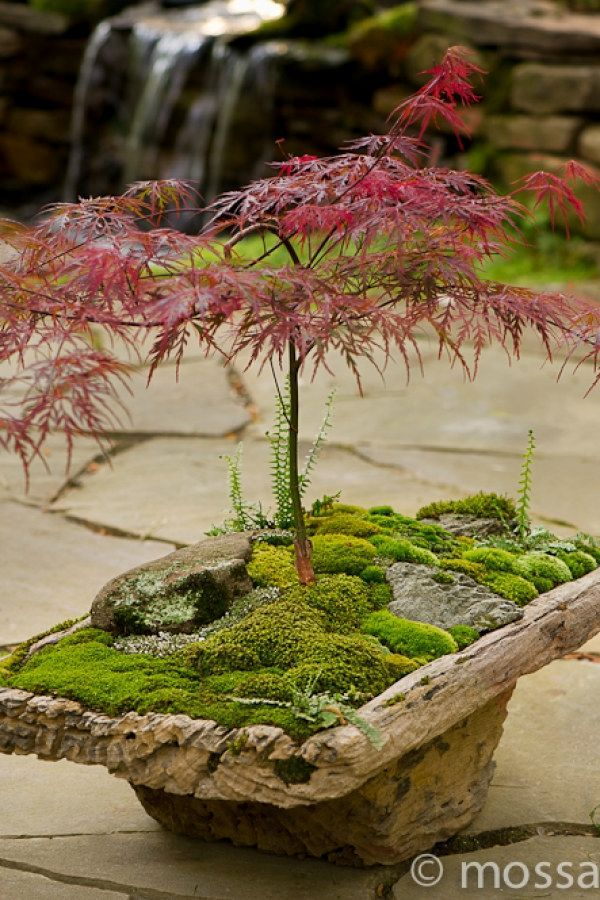 29 Creative Japanese Garden Designs You Can Build To Complement Your Backyard | … #japanesegardendesign