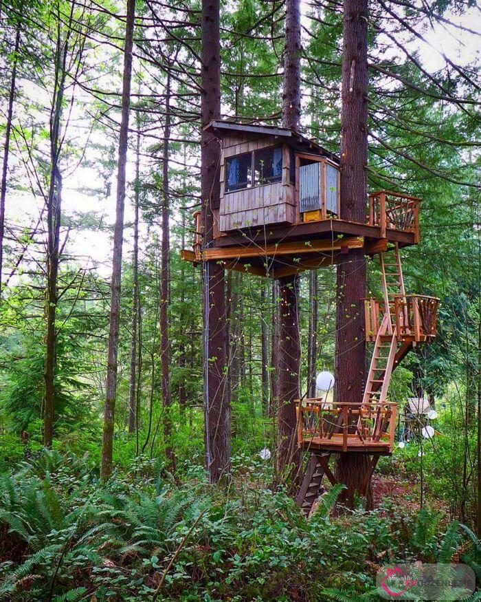 Ağaç Ev Modelleri ile Doğanın İçinde Huzurlu Bir Yaşama Merhaba