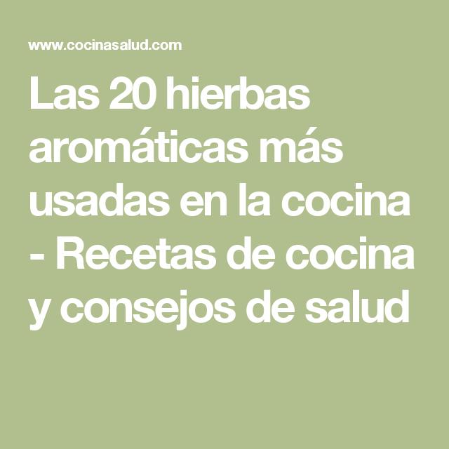 Las 20 Hierbas Aromáticas Más Usadas En La Cocina