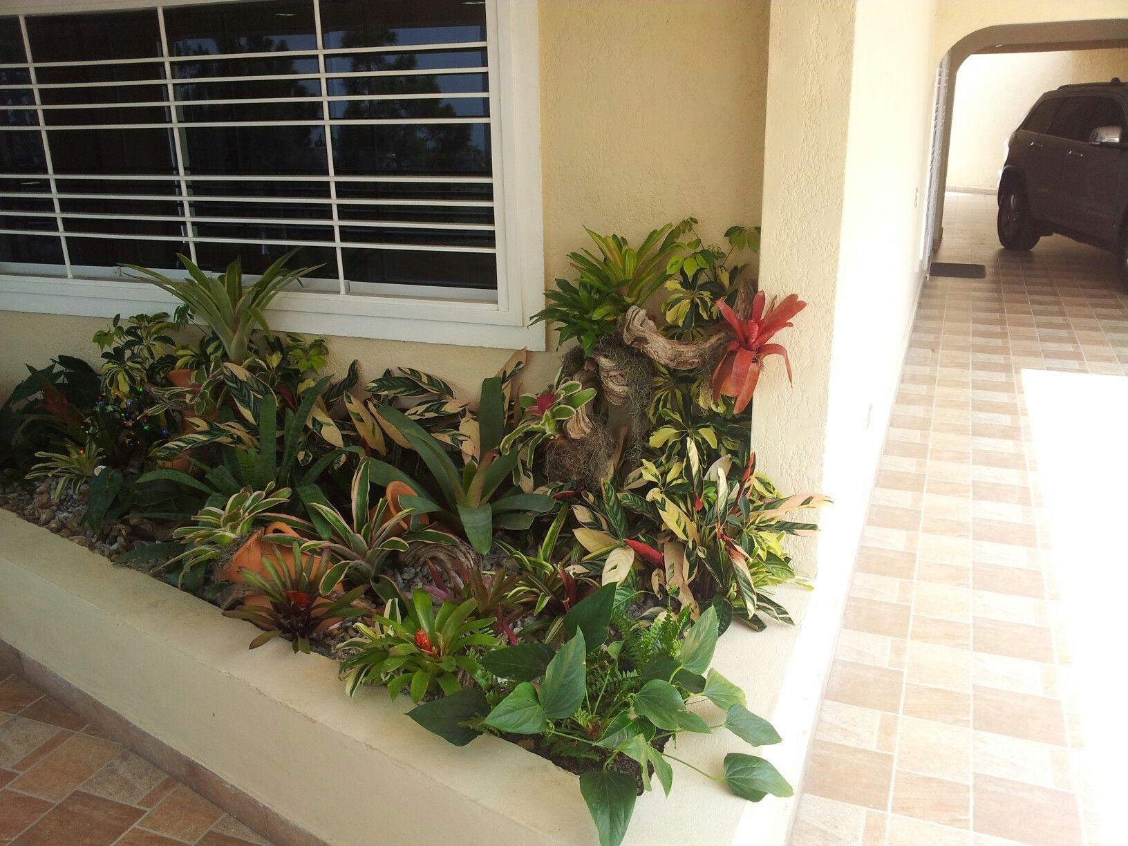 Jardin con plantas jardinera - Plantas para jardineras ...