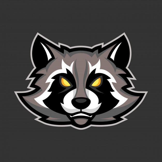 Raccoon Mascot