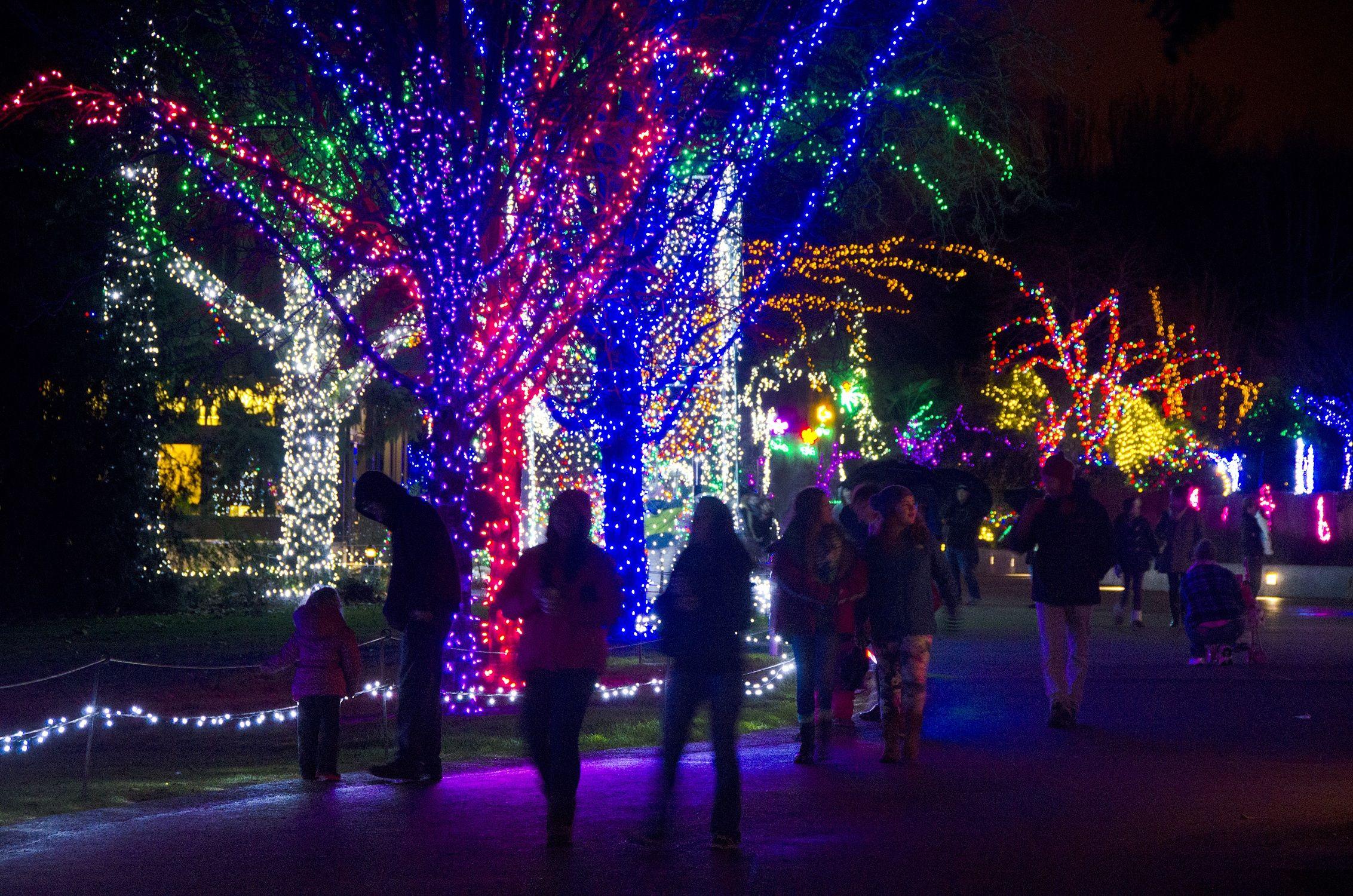 Best Christmas And Holiday Light Displays Around Seattle Tacoma Inside Christmas Light Displays Holiday Lights Display Holiday Lights Christmas Light Displays