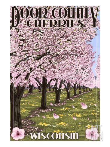 Door County Wisconsin Cherry Blossoms Art Print By Lantern Press At Art Com Cherry Blossom Art Blossoms Art Etsy Art Prints