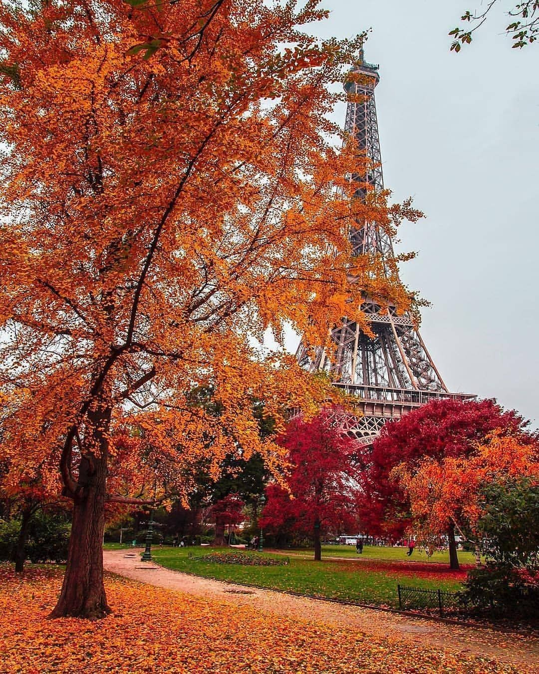 Autumn In Paris Paris In Autumn Autumn Scenery Paris