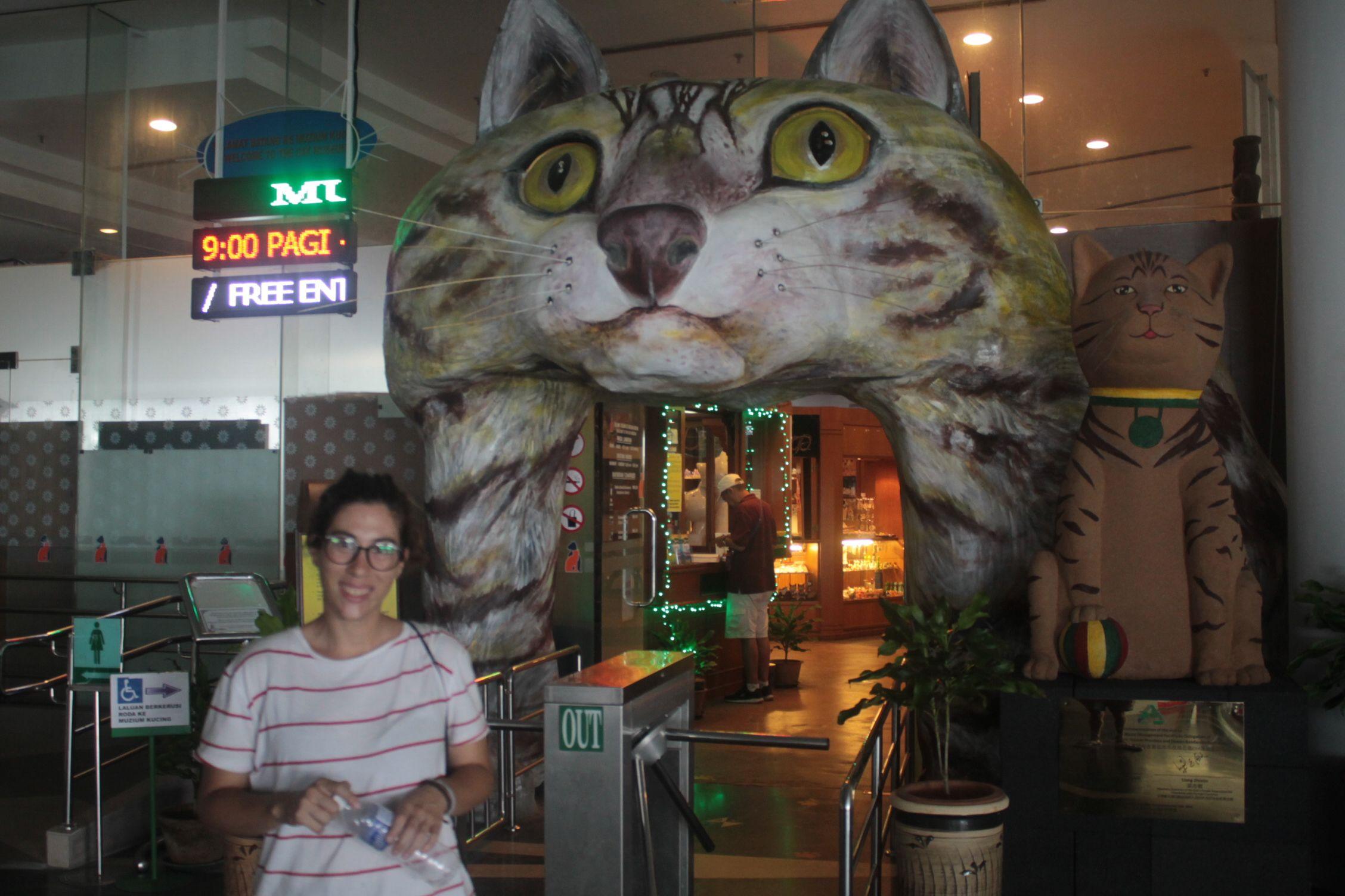 Entrada al Museo de los Gatos