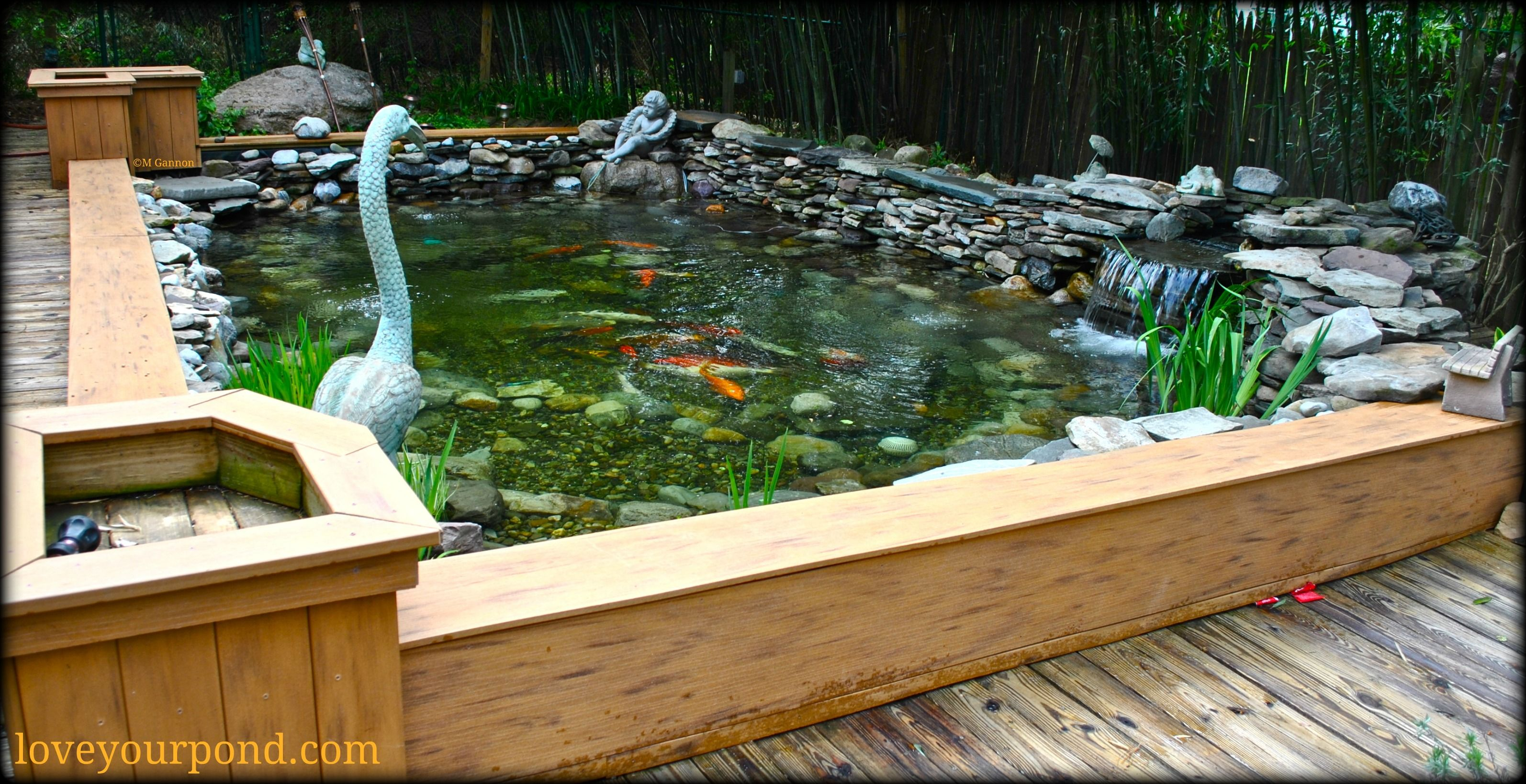 Semi above ground koi pond installation by full service Above ground koi pond design ideas