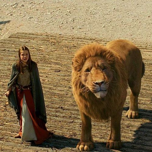 Narnia Love It When Aslan Lucy Are Together Stuff Pinterest