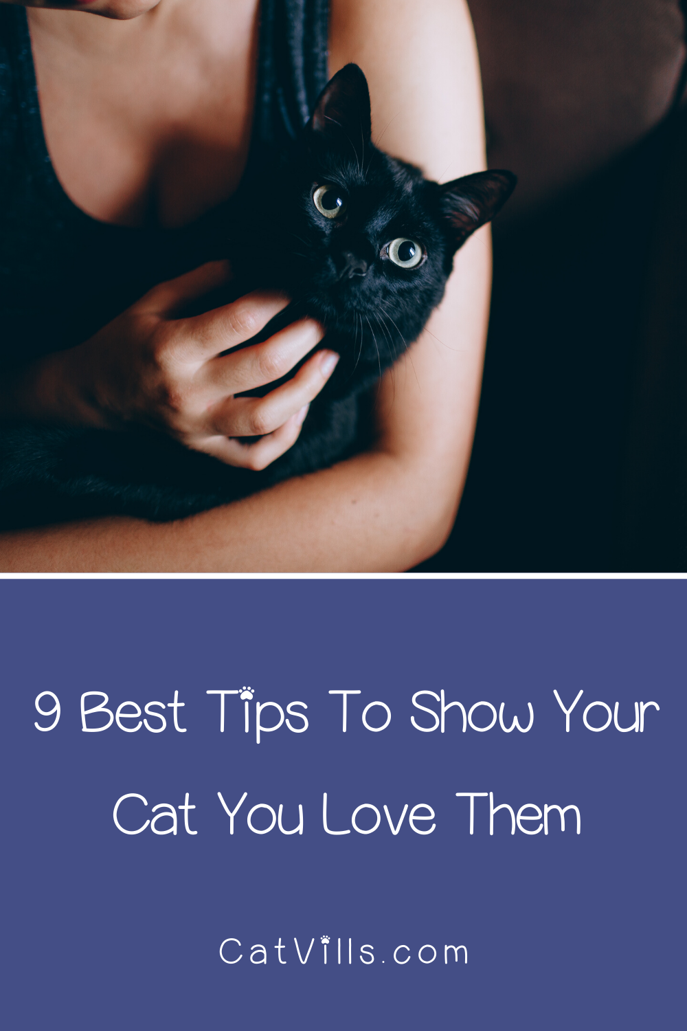 9 Ways to Show Your Cat You Love Them in 2020 Cat