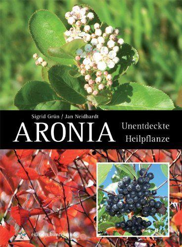 aronia pflanzen so holen sie sich die gesunde apfelbeere in den garten garten pinterest. Black Bedroom Furniture Sets. Home Design Ideas