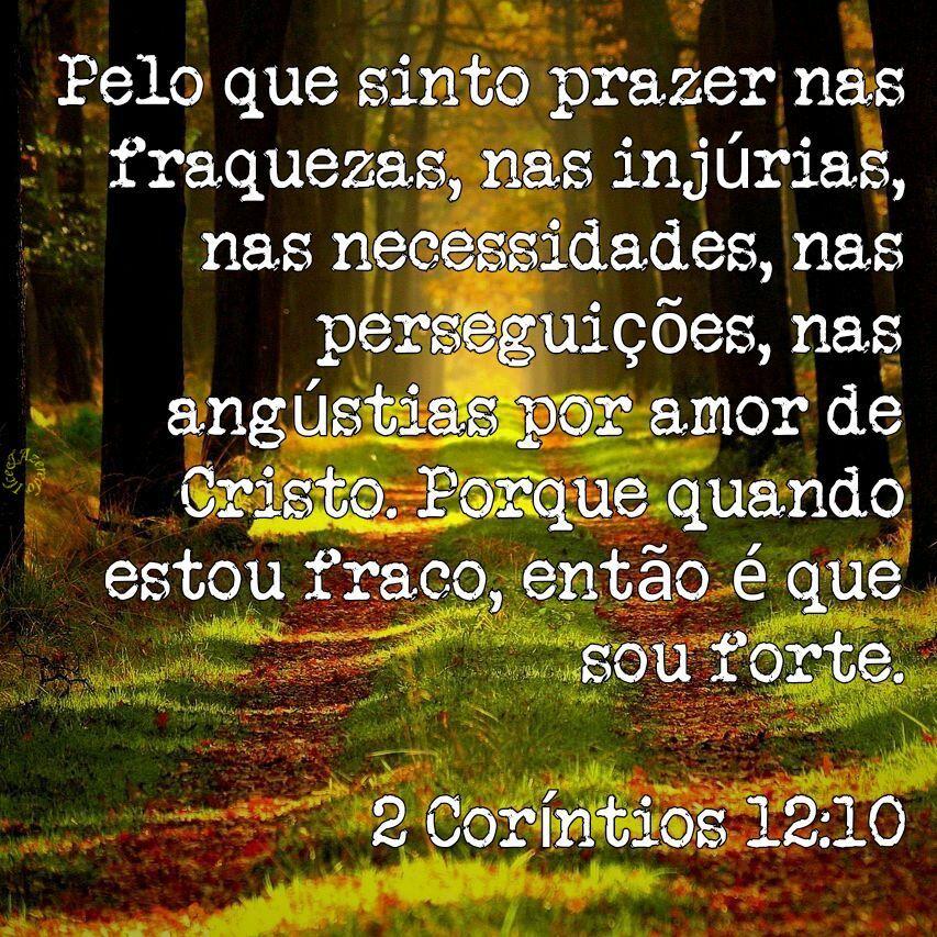 2 Corintios 12 10 Palavra Da Vida Palavra De Deus Mensagens