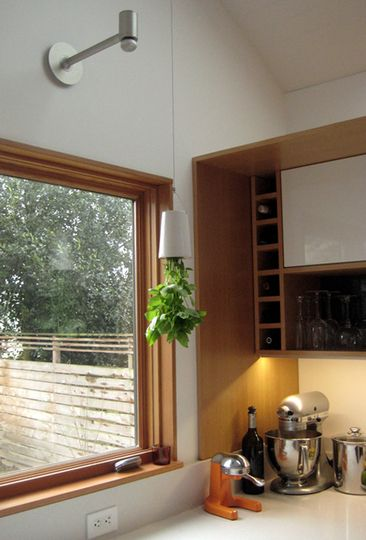Boskke Sky Planter - great for growing herbs in the kitchen (since I don't have a window sill!)