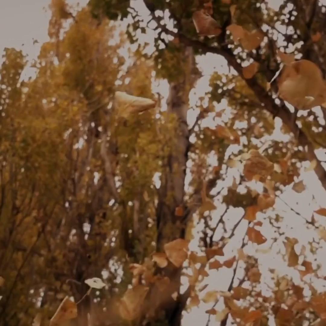 Welcome fall with a cozy art print from Feri and Joon.☕ 🍂 #artprint #minimalism #framedprints #modernart #wallart #FindItStyleIt #CurrentDesignSituation #HouseEnvy