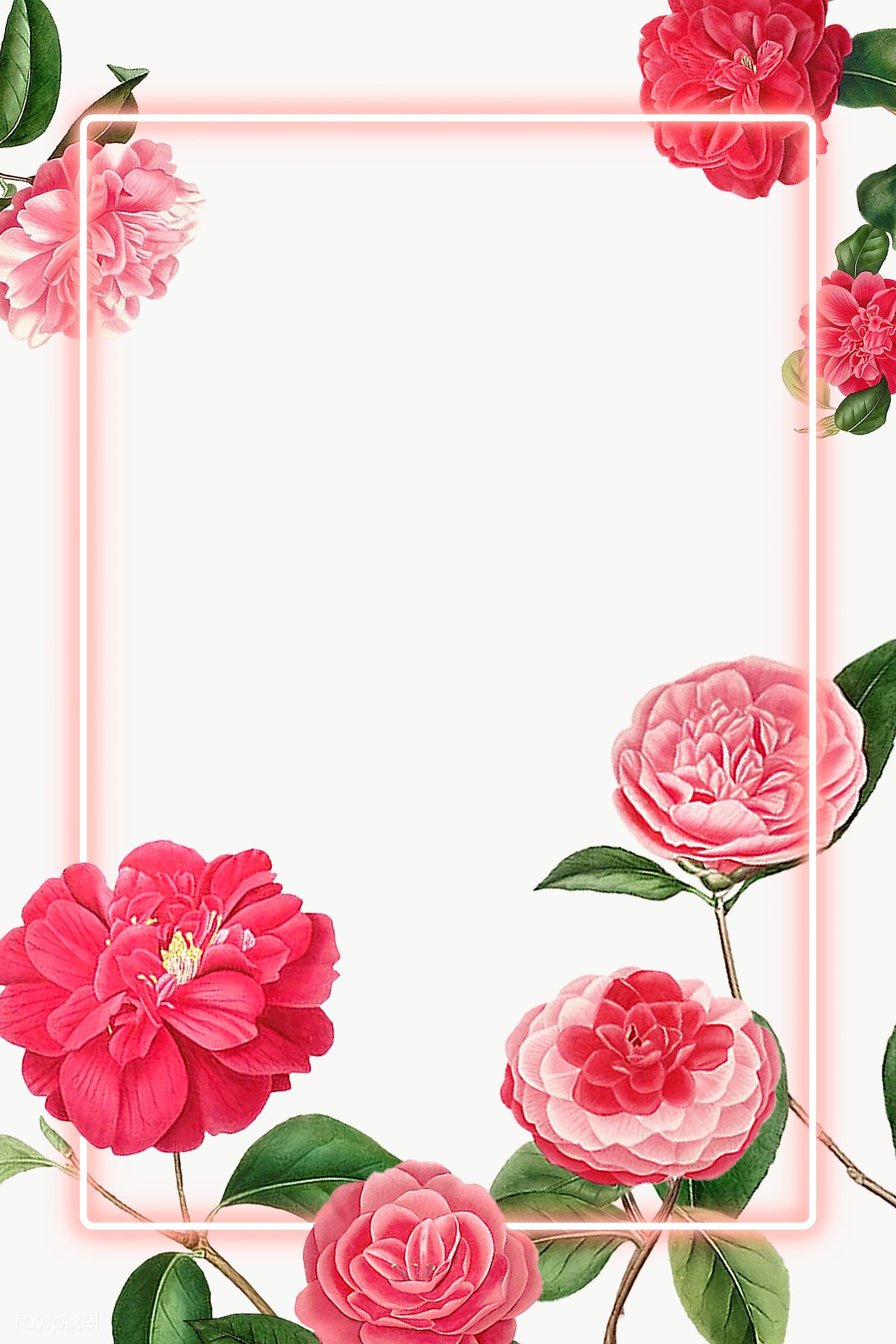 Download Premium Png Of Red And Pink Camellia Flower Patterned Blank Frame In 2020 Flower Frame Png Flower Illustration Flower Frame