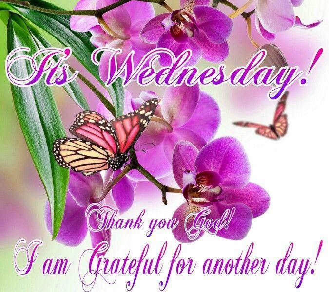Thankful Wednesday