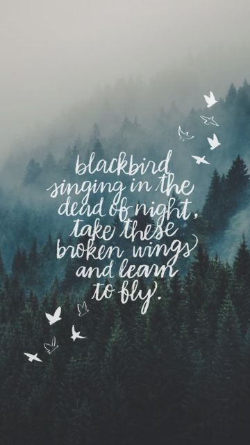 blackbird singing in the dead of night, take these broken wings and learn to fly. | WORDS TO LIVE BY in 2019 | Wallpaper iphone quotes backgrounds, ...
