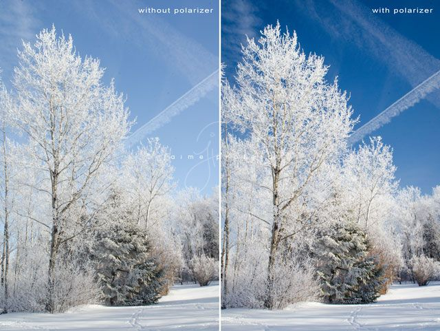 Why you would want to use a polarizer filter by photographer Jaime Profeta