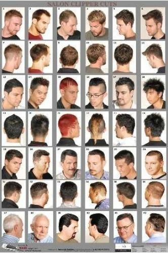 Haircut Posters : haircut, posters, Large, Format, Barber, Poster, Men's, Haircuts, Styles, Laminated, Haircuts,, Beard