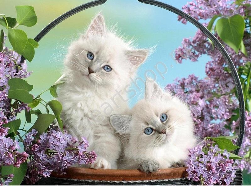 Милые котятки в лукошке с сиренью, картина раскраска по ...