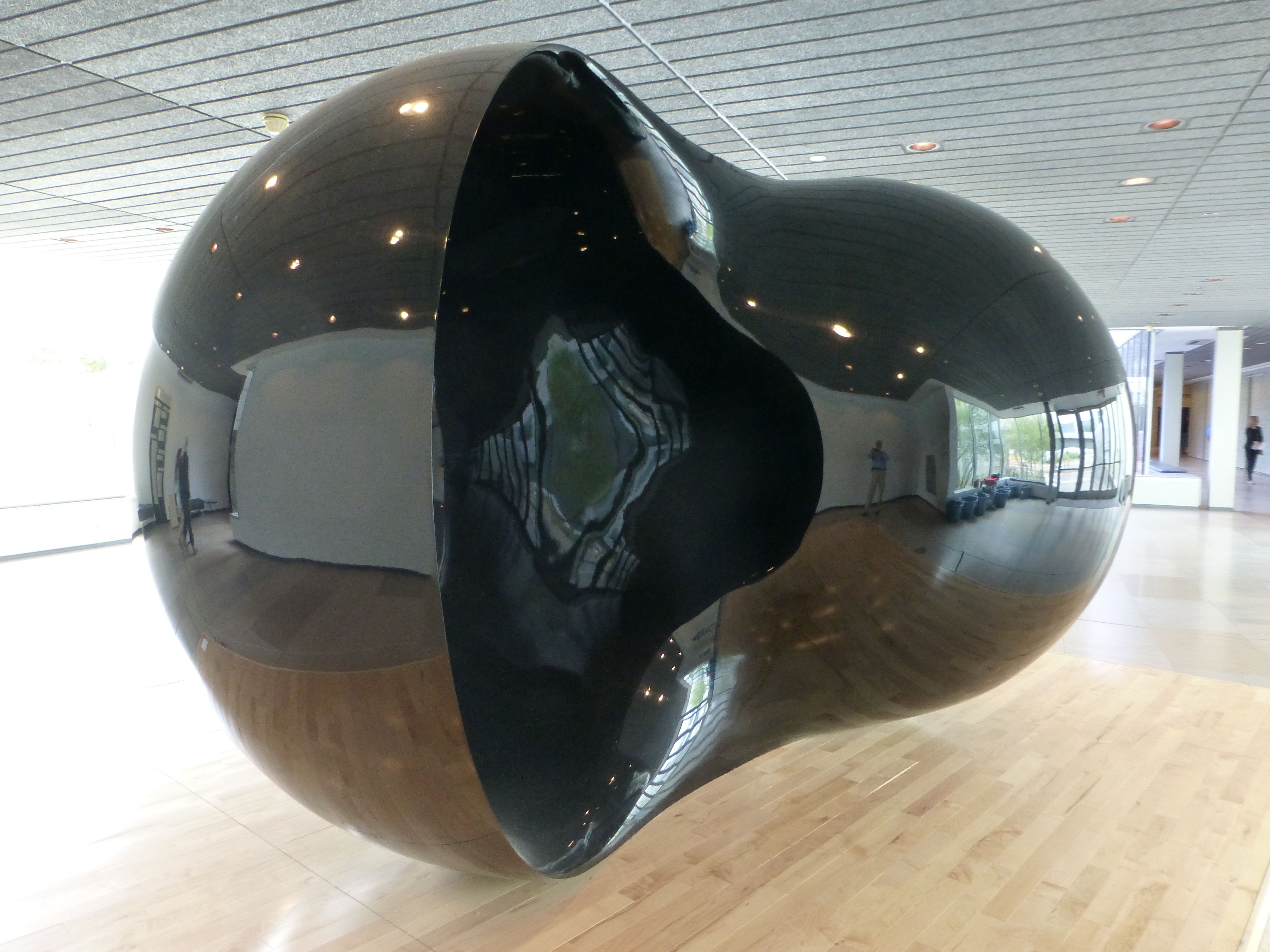 Upside Down, Inside Out, Anish Kapoor