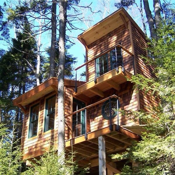 Treehouse / The Green Life