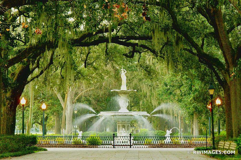 Framed Photo Print Of Forsyth Park Savannah Georgia Print Picture