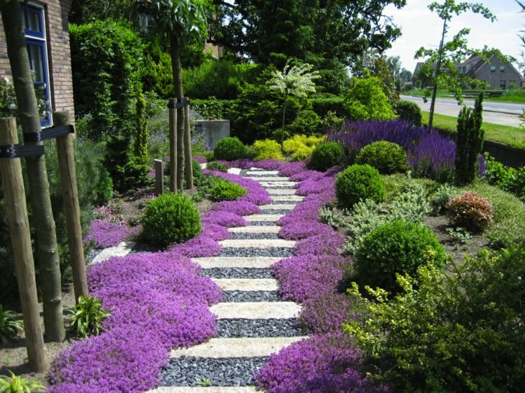 Gartengestaltung Bodendecker Rasen Alternative Trittsteine