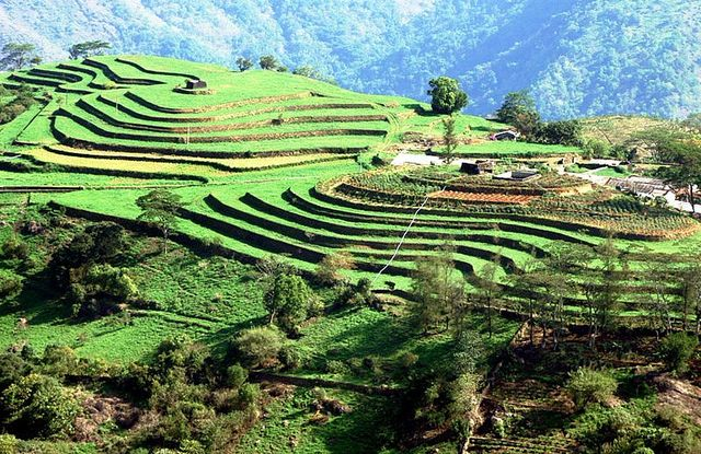 Pin on Kerala Tourism