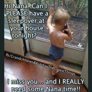 Nannies And Their Hunies Grandma Quotes Nana Quotes Grandparents Quotes
