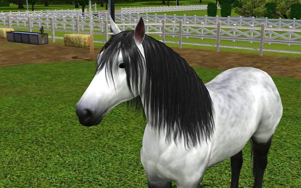 realistic horse games # 20