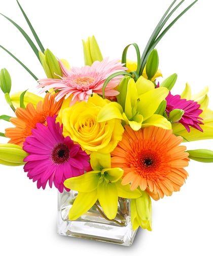 Bright Amp Stunning Cheap Flower Delivery Best Flower