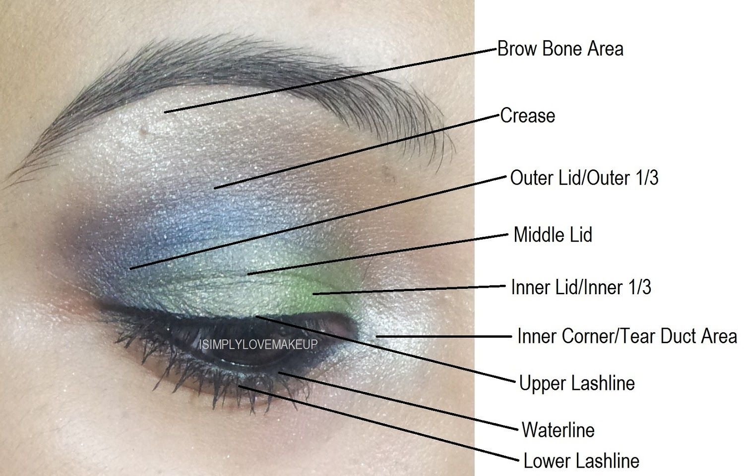 Parts of eye for makeup google search make upmaquillaje parts of eye for makeup google search ccuart Gallery