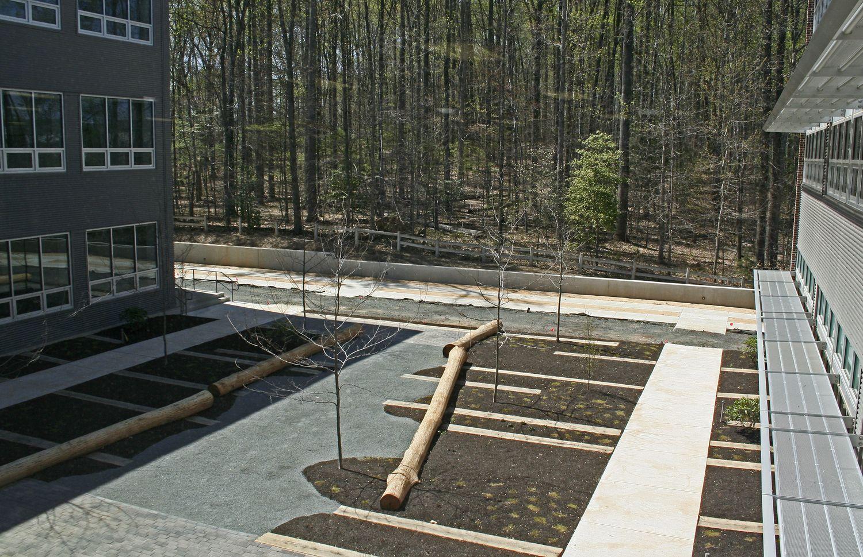 Manassas Park O Shea Wilson Siteworks Manassas Park Manassas Forest Ecosystem
