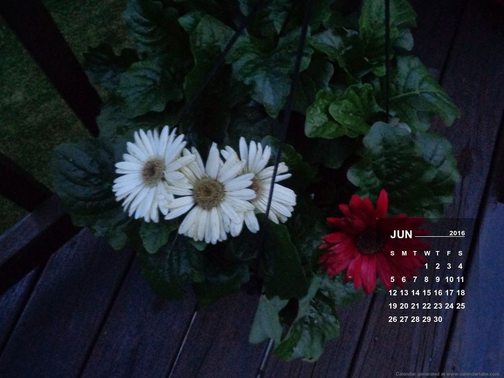 Desktop Calendar Wallpaper Creator : Desktop wallpaper calendar creator calendars for desktops