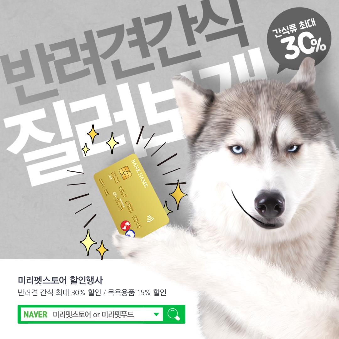반려견 반려동물 강아지 템플릿 배너 웹디자인 디자인