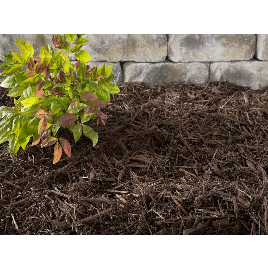 Premium 2 Cu Ft Dark Brown Hardwood Mulch Lowes Com Hardwood Mulch Mulch Hardwood