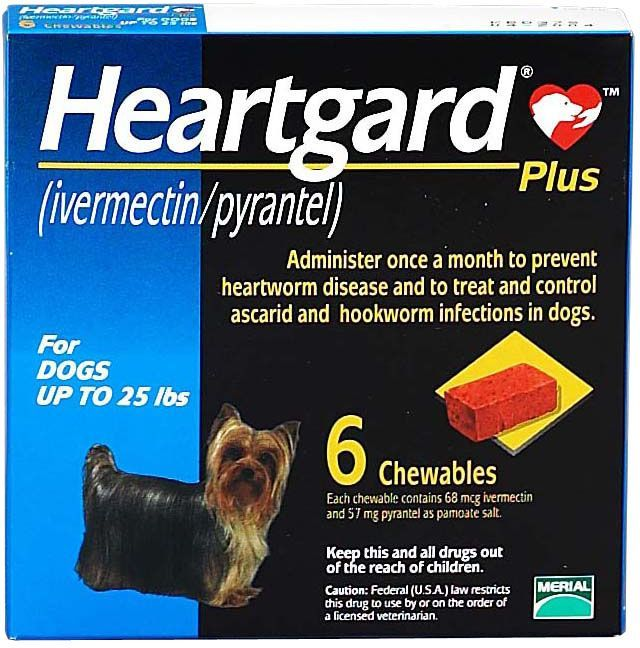 Heartgard Plus Chewables For Dogs Blue 6 Ct Up To 25 Lbs Heartworm Prevention Heartworm Heartworm Disease