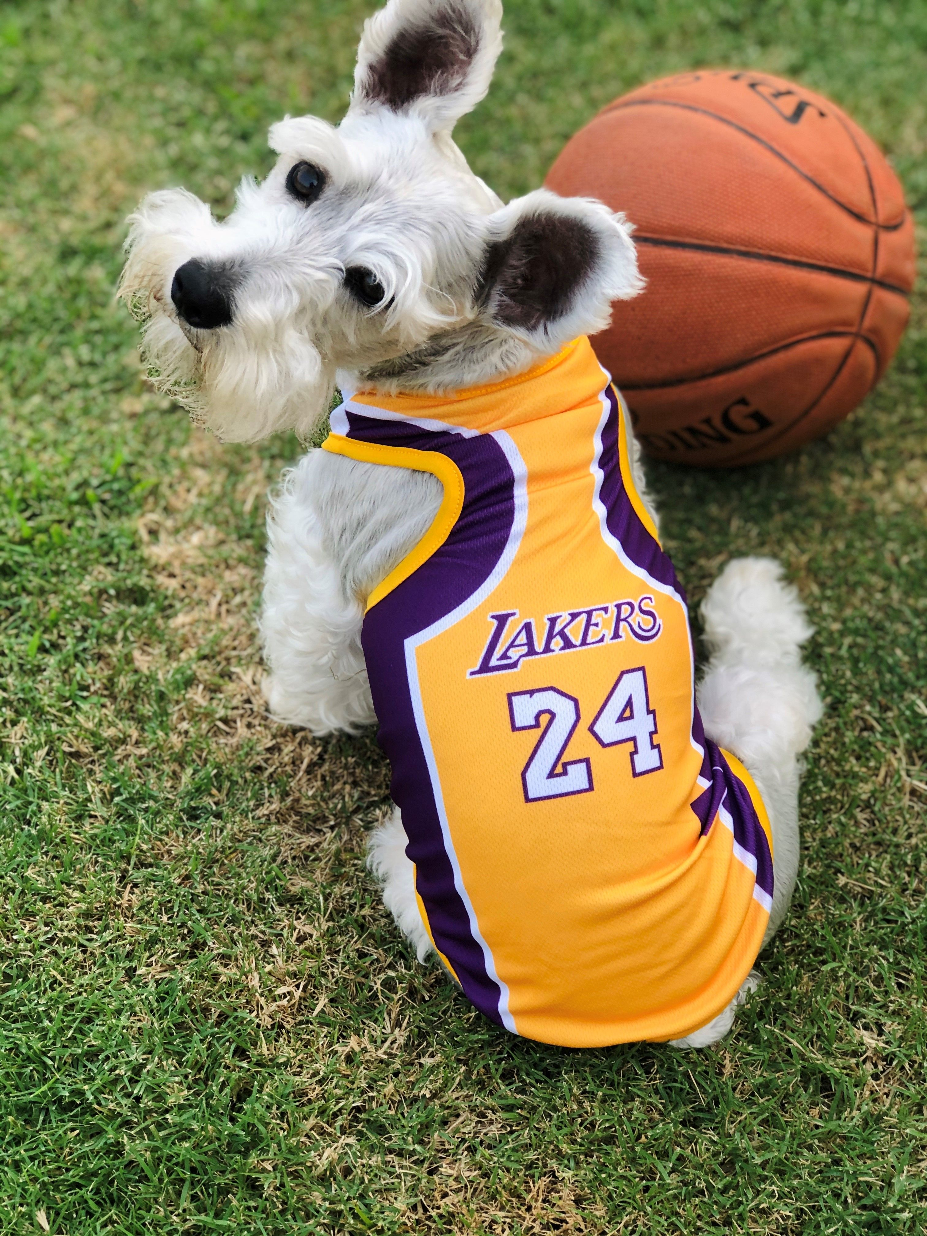 Kobe Bryant Jersey | Dog jersey, Pet store, Animal lover