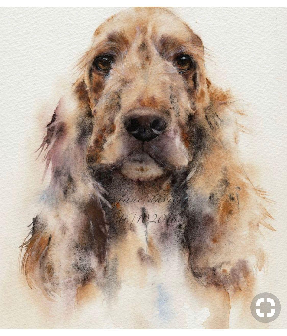 Pin Van Deborah Borgo Op Painting Huisdier Portretten Dieren Schilderen Aquarel Dieren