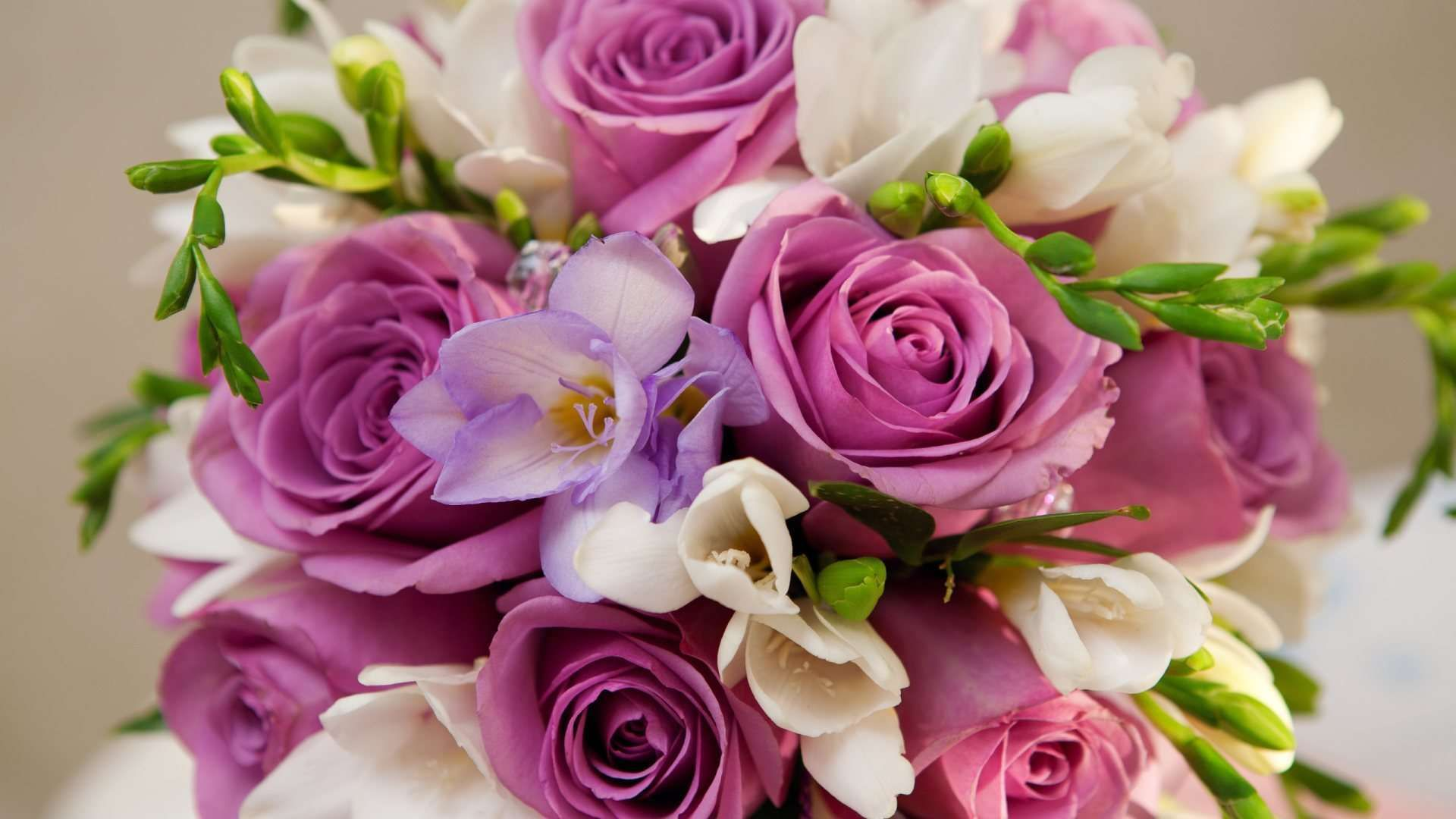 Beautiful Purple and White Flowers Bouquet 1080p HD
