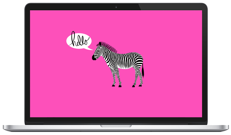 My New Desktop Wallpaper Fabulous K Free Hello Zebra Desktop