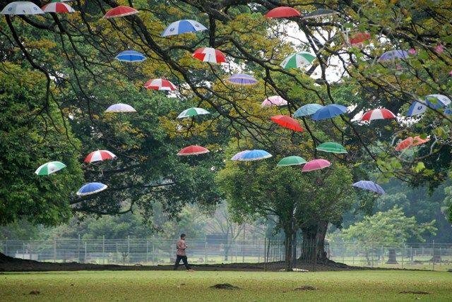 Objek Wisata Dekat Kebun Raya Bogor
