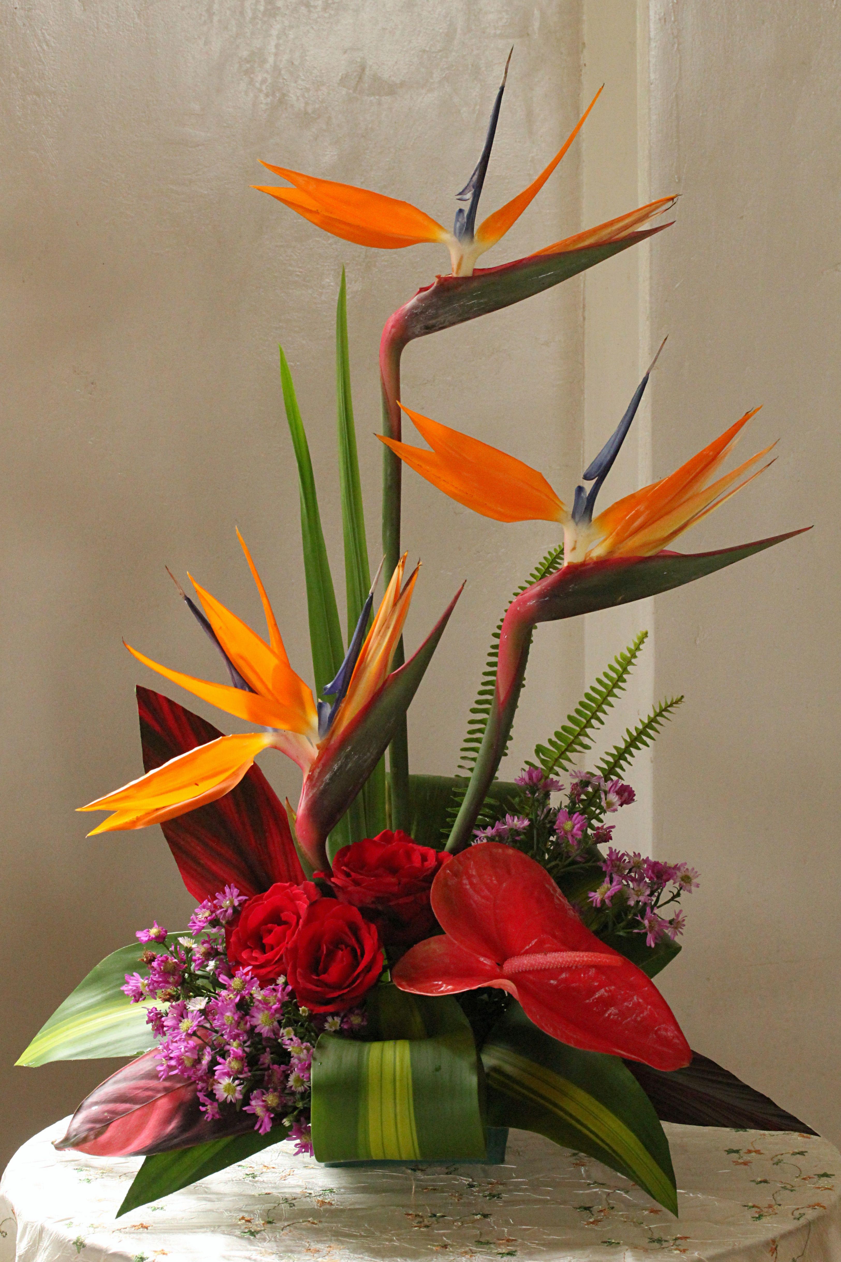 Bird of paradise arrangement... Tropical flowers, Flower