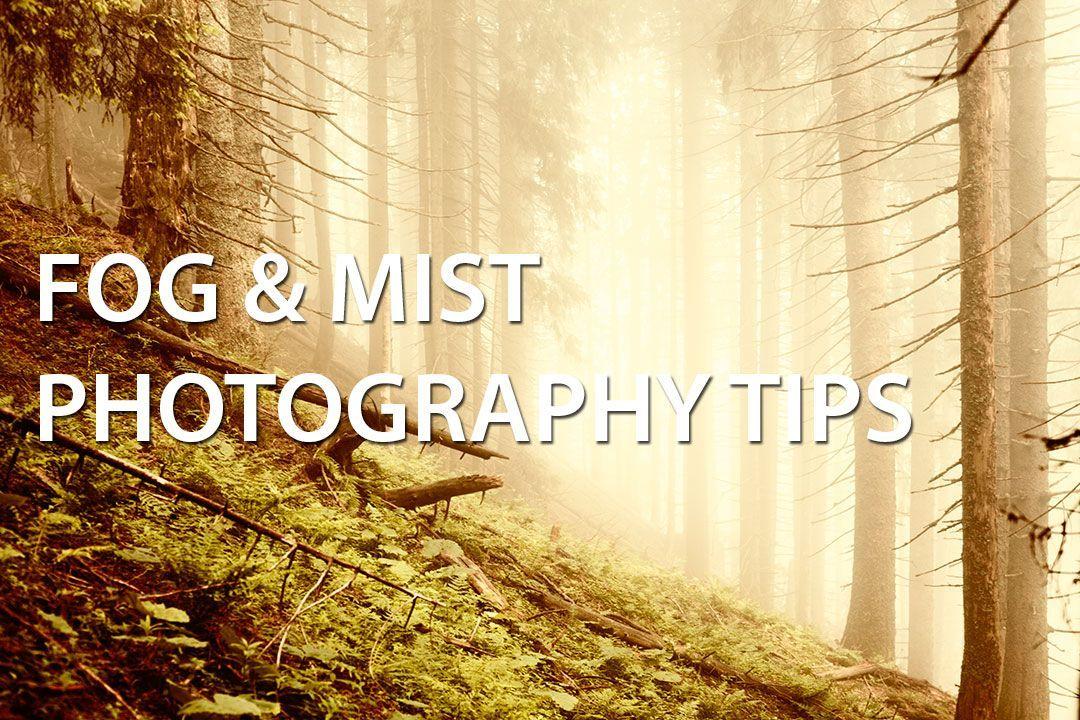 Fog & Mist Photography Tips - Discover Digital Photography #DigitalPhotographyTips