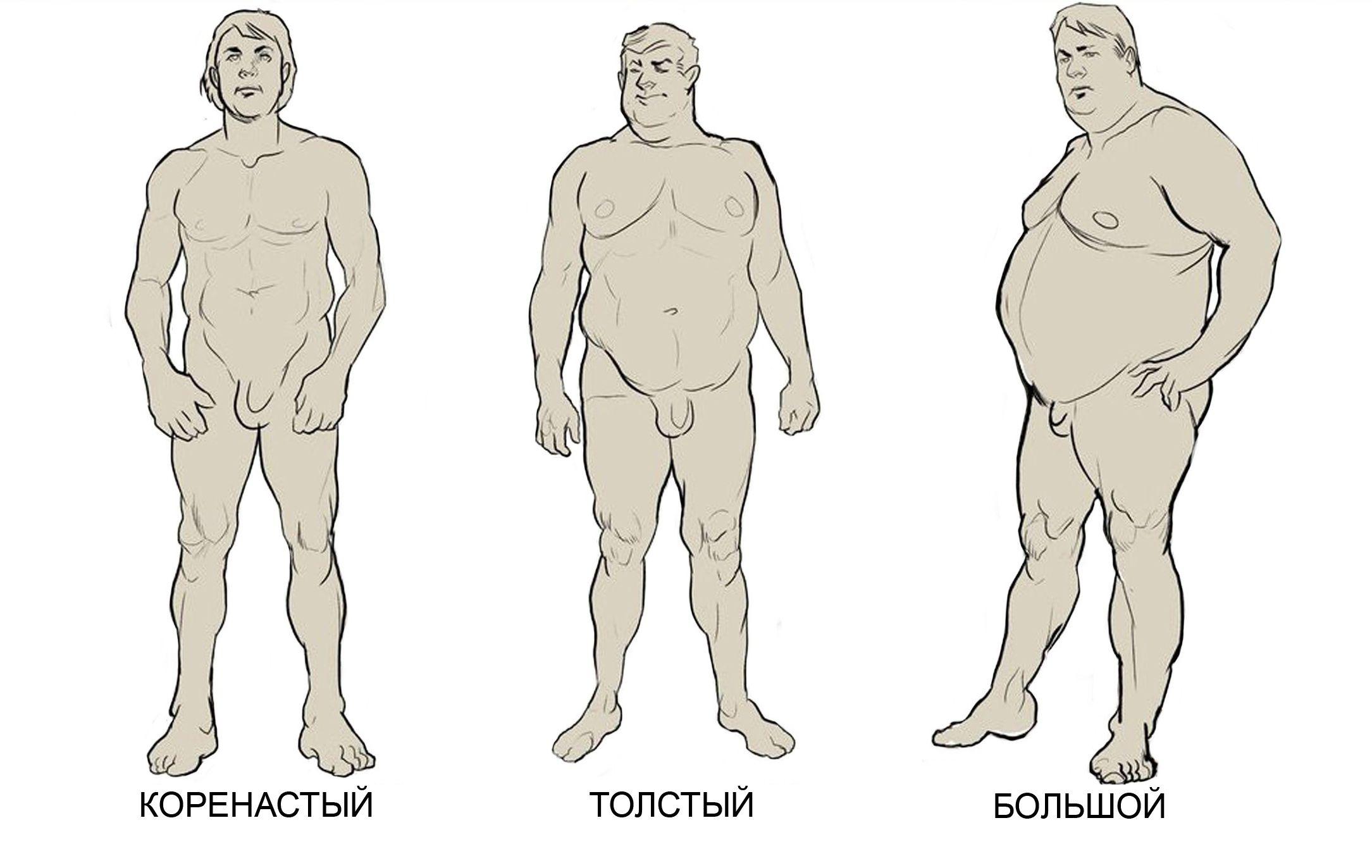 карташёв виды телосложения у мужчин названия картинки парнем