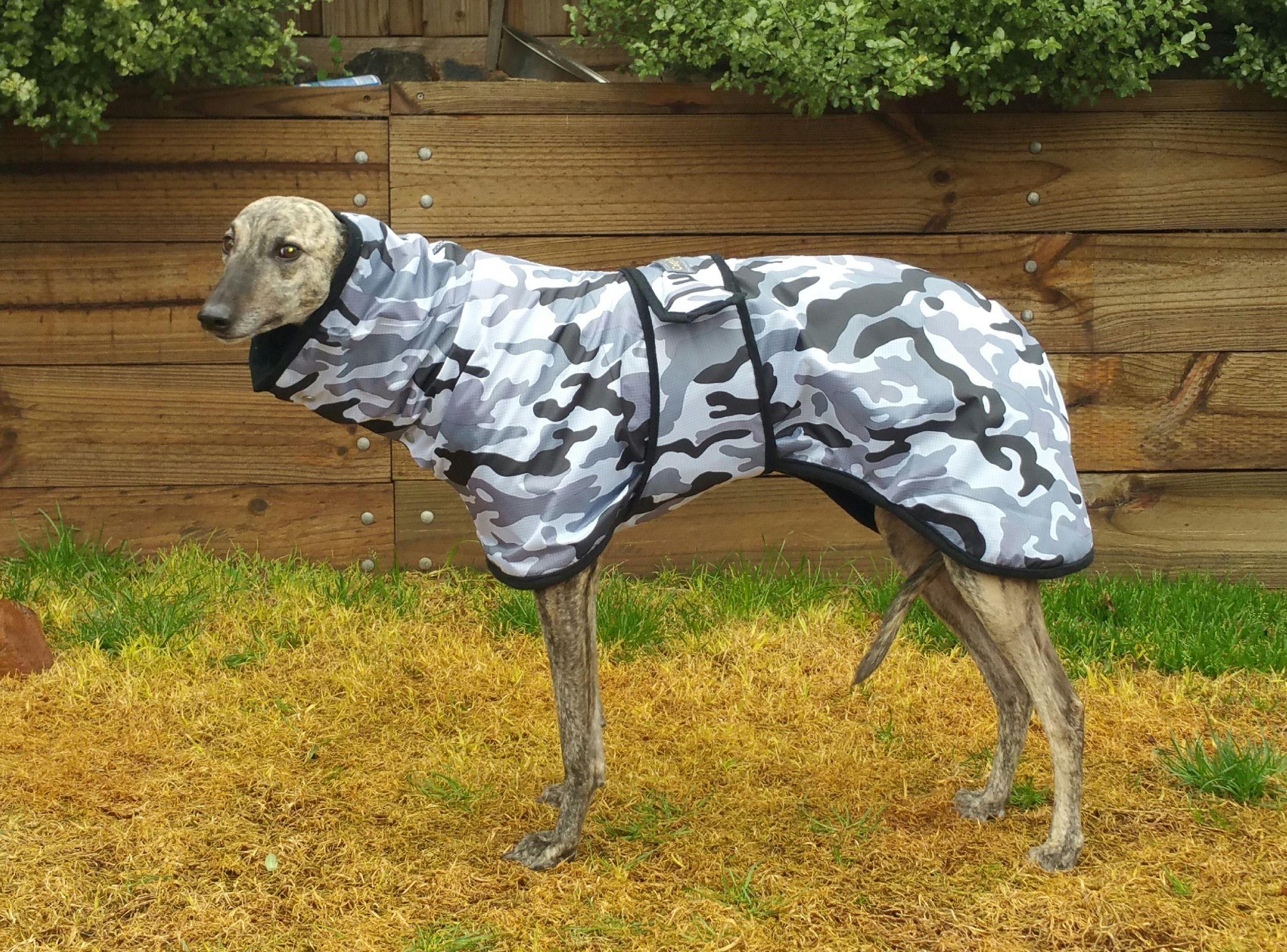 Waterproof Greyhound Coat Greyts Dog Coats Winter
