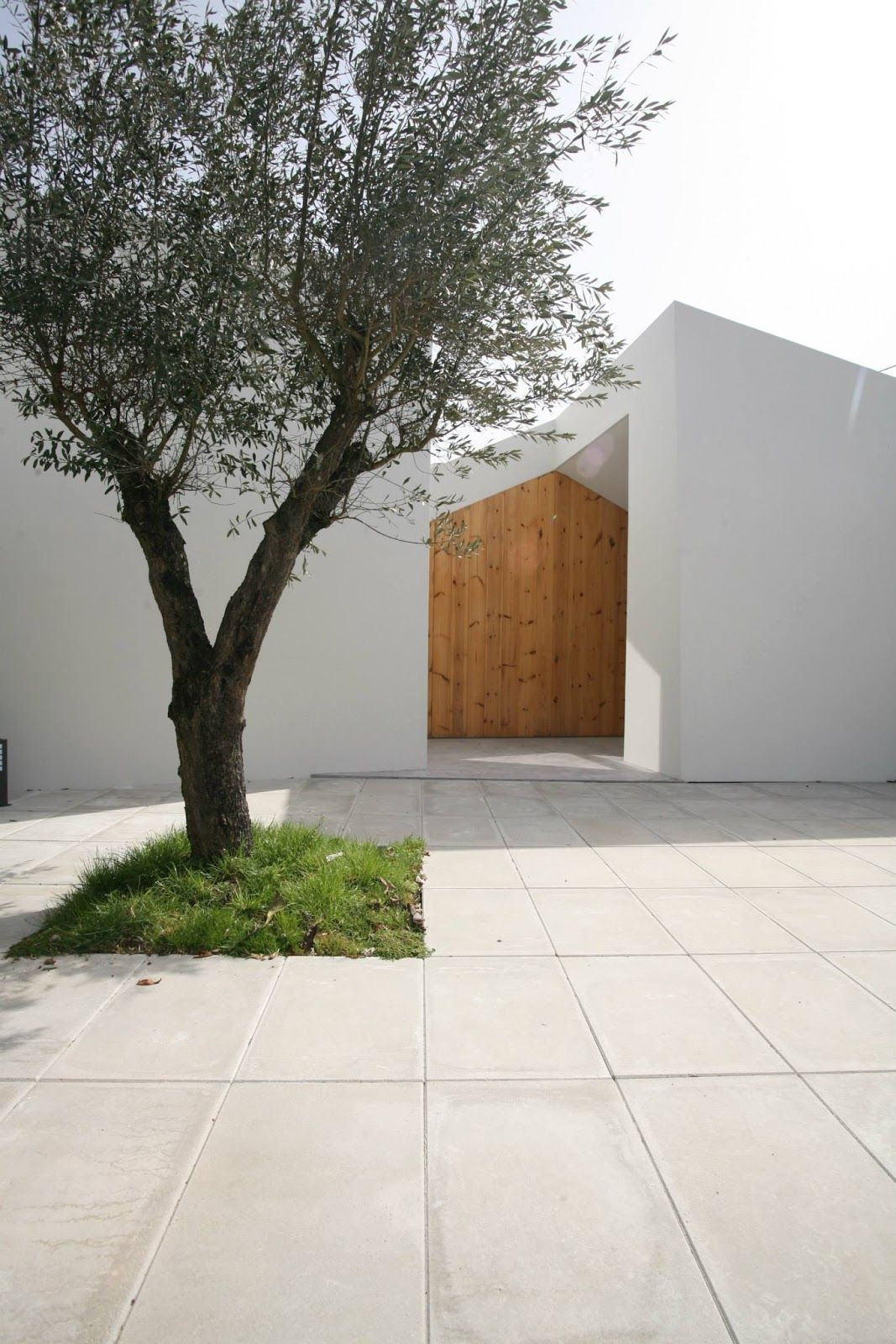 a f a s i a: Oficina d'Arquitectura